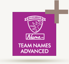 wilcom_element_logo_teamnamesadvanced